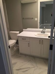 Brand new basement suite available, separate and sound proof!  Edmonton Edmonton Area image 3