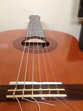 Yamaha Guitar C40 Seabrook Hobsons Bay Area Preview