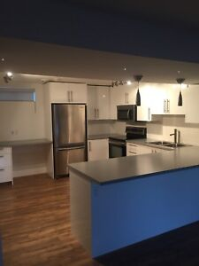 Large 1 Bedroom Recently Renovated Basement Suite