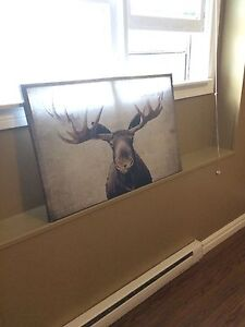 Large moose picture  very nice- NEED GONE