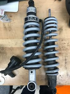 BMW 1150 GS shocks