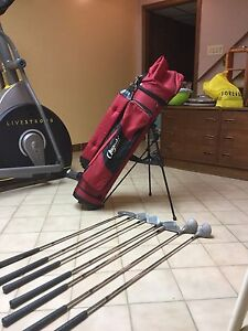Golf bag with stand and 7 clubs.