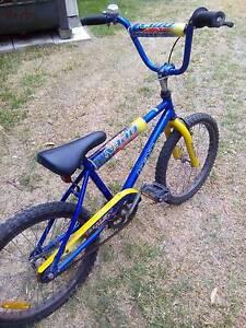BMX Bike - Kent Brand Thornton Maitland Area Preview