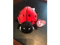 LadyBug Ty Beanie Baby 2.0 Maiden MWMT