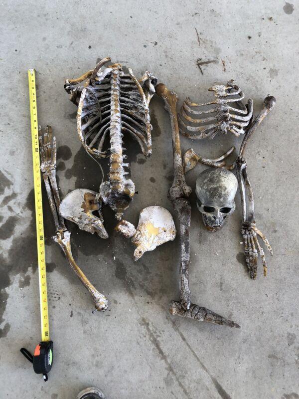 Vintage Astroland Coney Island Dante's Inferno Prop Skeleton Bones Parts