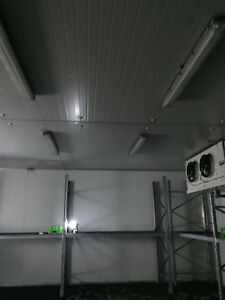 5 Large industrial cool rooms 8.5m x 8.5m x3.5m high
