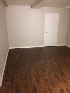 Fully Renovated Basement Apartment - Available Jan 1st