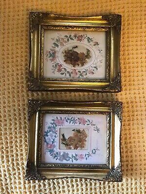 Two Vintage Katy Bell Pressed Flower Framed Pictures