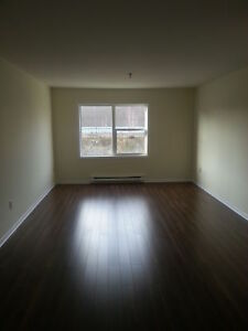 BEAUTIFUL 2 BDRM  CENTRAL HALIFAX COMPLETELY RENOVATED JAN. 1ST