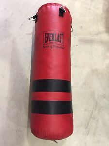 Punching bag Everlast