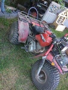 1984 honda big red250
