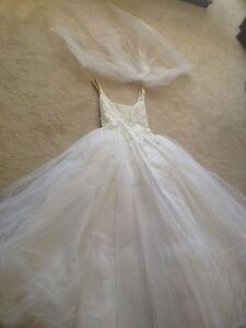 Wedding dress, veil, beaded crown