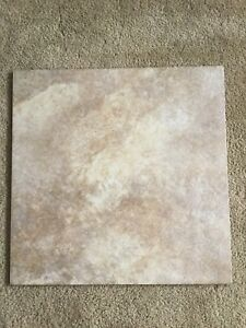 Tiles -  Ceramic x 9= $30.     (17 inches x 17 inches each)