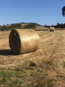 Hay / grass feed Lysterfield Yarra Ranges Preview