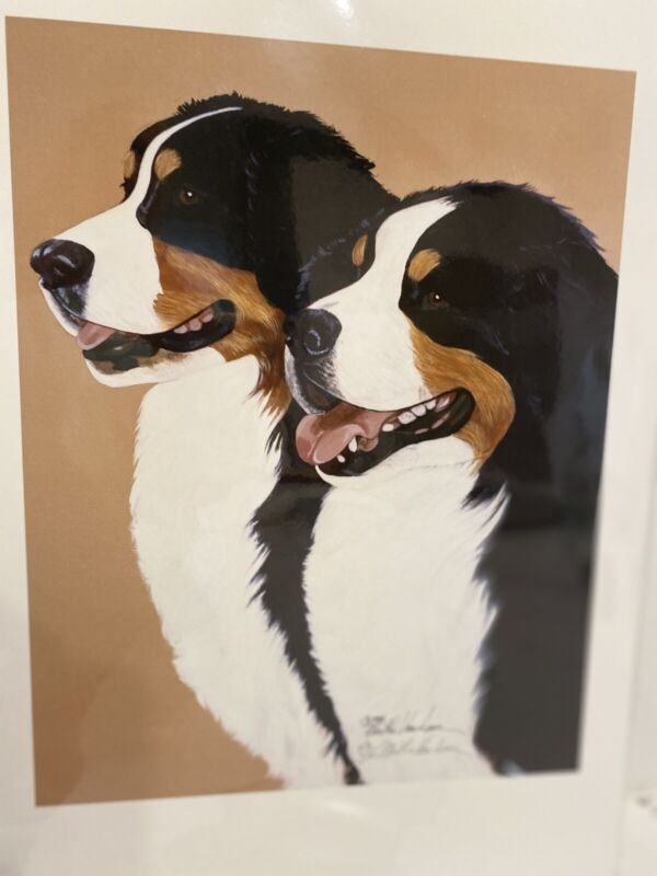 Bernese Mountain Dog Pair Ltd Ed 11x14 Print By Van Loan