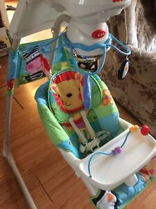 Adjustable baby swing and extras