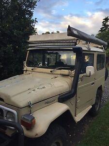 1984 bj42 Caravonica Cairns City Preview