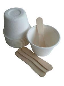 BULK(50 sets) Eco Ice-cream gelato cup + wood icecream spoon (B11/50 + S6/50)