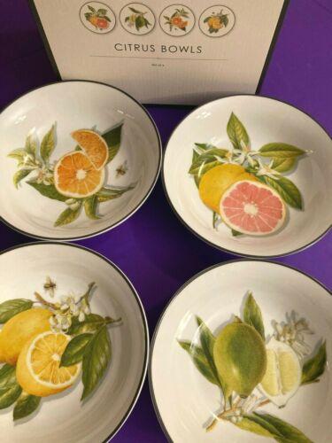 🍋 NEW 🍊 Set 4🍈 WILLIAMS SONOMA 🍊 Orange, Lime, Grapefruit Lemon CITRUS BOWLS