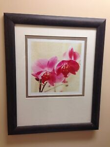 Orchid picture print