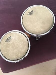 Bongo drums percussion Rochedale South Brisbane South East Preview