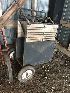 Calf handling chute with scale