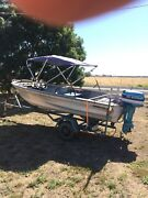 Tinny, 12' with trailer and 25hp Evinrude outboard Bagshot Bendigo Surrounds Preview