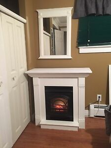 Fireplace, insert and mirror