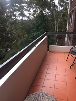 Don't miss out!! Flatmate needed ASAP!!!! Lane Cove Lane Cove Area Preview