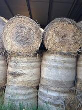 Mulch round bales for sale Mutdapilly Ipswich City Preview