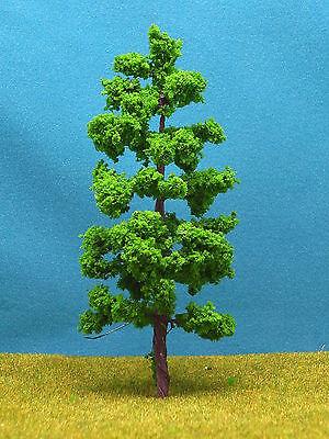 X20 Bäume 10 Stück Laubbäume Pappeln 12cm NEU