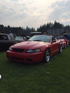 2003 SVT Cobra
