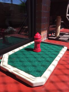 The toilet training aid that looks great! Ashmore Gold Coast City Preview