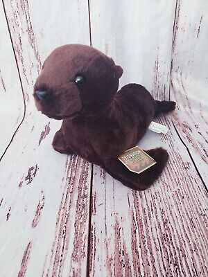 Destination Nation Harbor Seal Plush Stuffed Animal by Aurora 14 Inch New (National Harbor Kids)