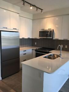 Brand New One Bedroom + Den  Condo Available For Lease