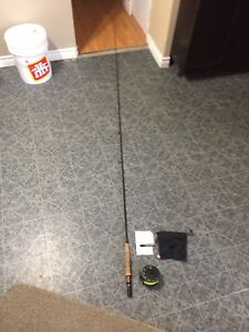 Fly fishing fly's pole and reel