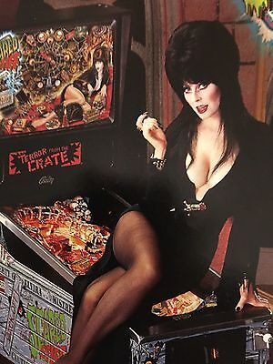 """ELVIRA """"SCARED STIFF"""" PIN BROCHURE 1996 GREAT SHAPE PROTECTED PLASTIC COVER"""