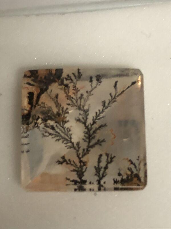 14mm SQ Dendritic Quartz Square cut Loose Gemstone