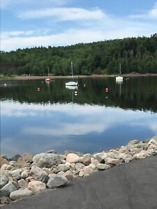 Looking to Purchase a Mooring in Meenan's Cove