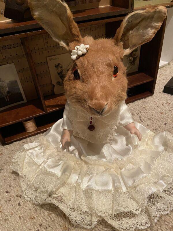 Taxidermy Rabbit Bunny Head On Vintage Porcelain Doll Antique Dress Oddities