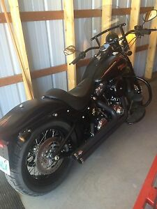 2009 Harley cross bones Springer MINT