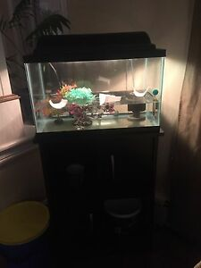 10 gallon with stand and accessories 140$ OBO