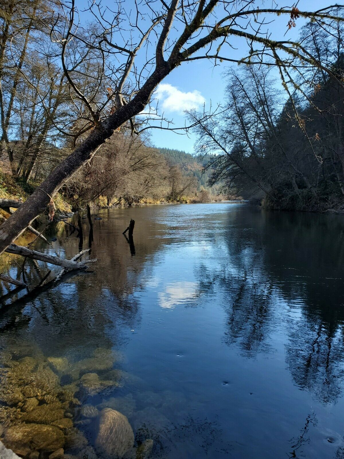 20 ACRE GOLD MINING CLAIM - Trinity River. Douglas City, CALIFORNIA Unpatented