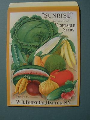 1910S W D  Burt Co  Sunrise Vegetable Seed Packet   Dalton  N Y   L  K