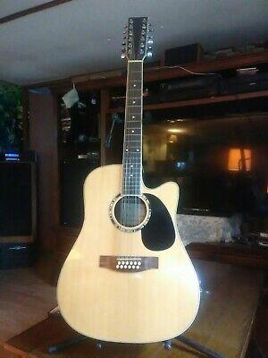 RH 12 String Electric Acoustic Cutaway Guitar W/Bag=Martin/Washburn