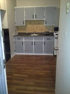 All inclusive 2nd floor  bachelor apt in Gananoque