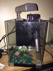 Small fish tank set up swap for budgie Clarkson Wanneroo Area Preview