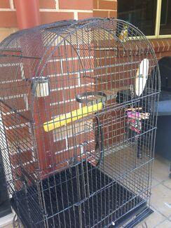 Bird cage Balmain Leichhardt Area Preview