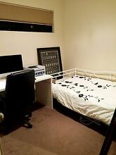 Westminster single room rent for female only Westminster Stirling Area Preview
