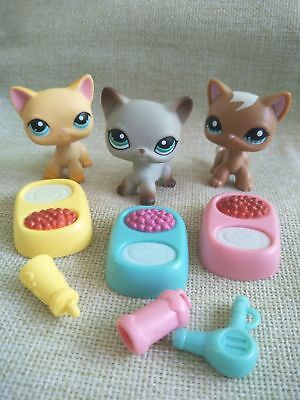 3lot Littlest Pet Shop Short Hair grey Cat 391 Yellow 339 Brown 1170 LPS Toys